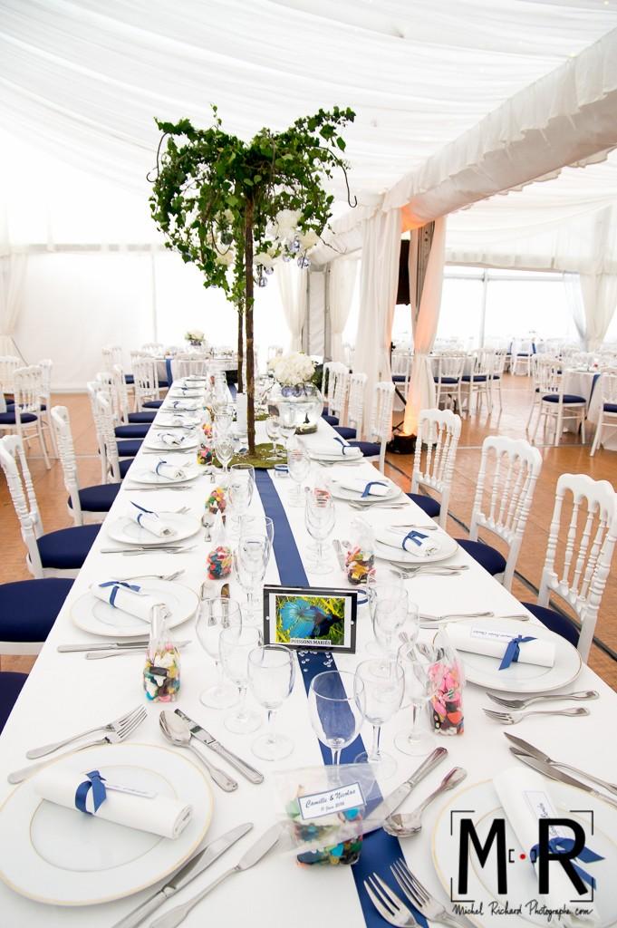 décoration de table de mariage en bleu